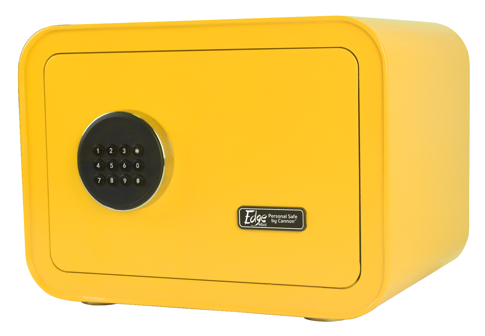 mini personal safe