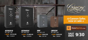 gun safes on sale