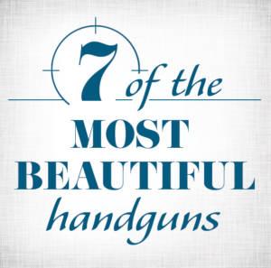 beautiful handgun safe