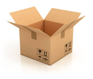 cardboard box decoy