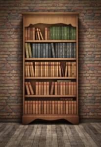 bookshelf safe