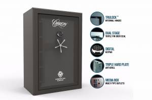 deluxe safe features