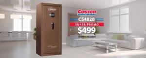 CS 4820 Costco Promo